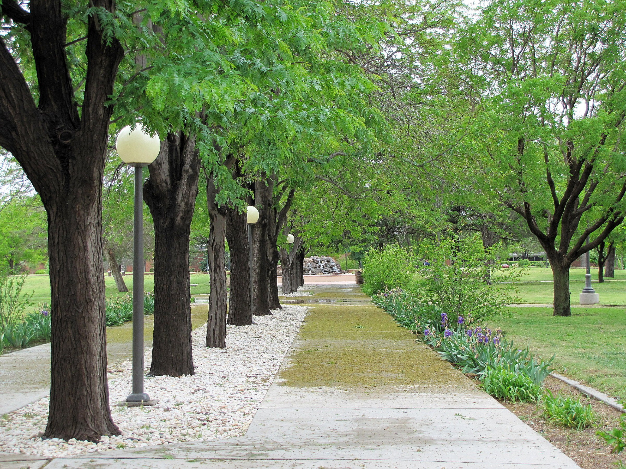 ENMU Campus View